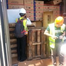 Container Stripping Survey