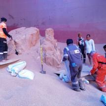 Cargo Inspection & Damage Survey